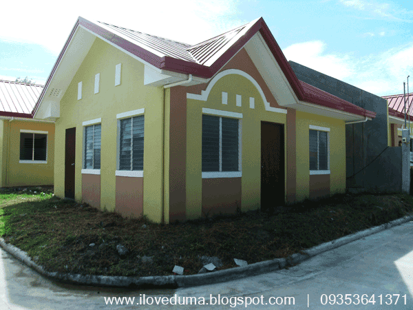House lot sale Dumaguete image