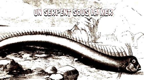 Wstêgor. Potwór z g³êbin / Un serpent sous la mer (2010) PL.TVRip.XviD / Lektor PL
