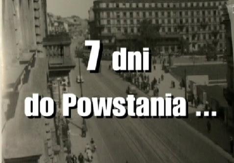Siedem dni do powstania (2008) PL.TVRip.XviD / PL