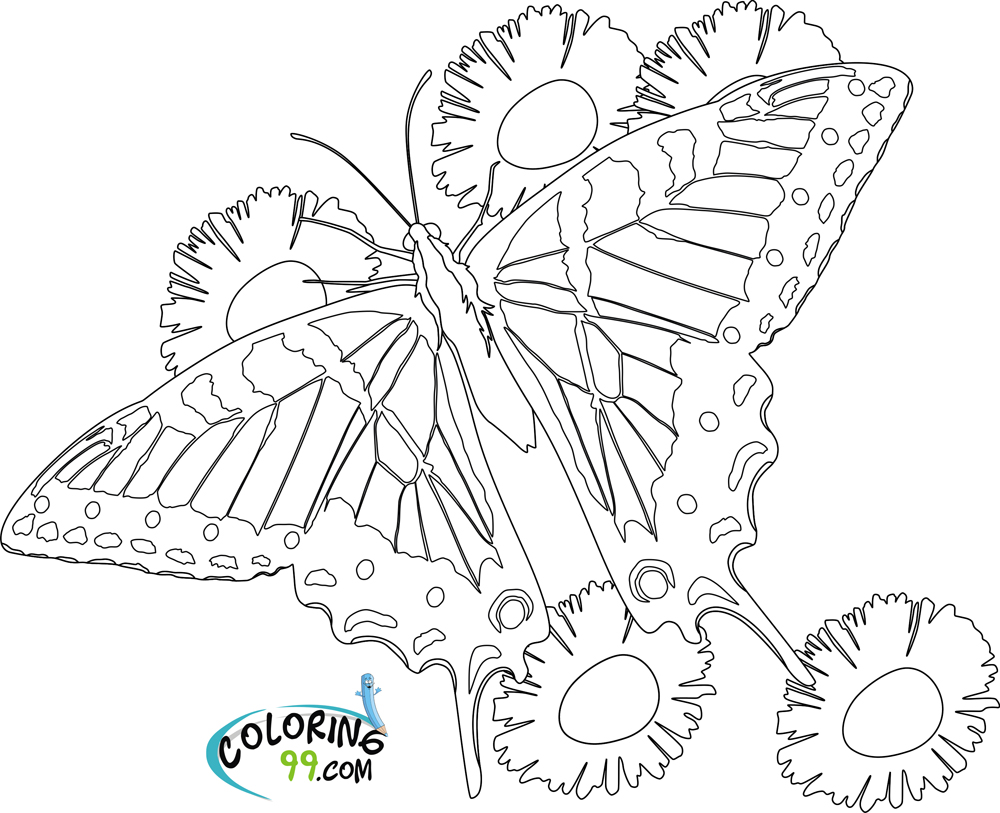 Butterflies coloring pages printable games - flowers and butterflies coloring pages