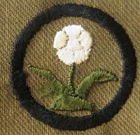 Girl Scout Badge 1920: Naturalist. (Flower) - DaisyLow.com Website designed n Memory of Eileen Alma Klos (1929-1974)