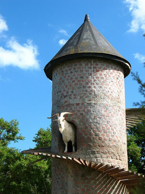 The Goat Tower Seen On www.coolpicturegallery.us
