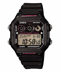 Casio Couple Standard : MTP-1335D