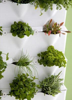 Ideas para pintar la casa interior - Plantas interior ikea ...