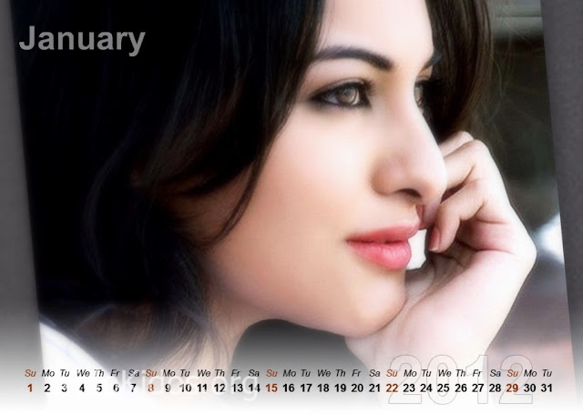 Sonakshi Sinha - Calendar 2012 Seen On www.coolpicturegallery.us