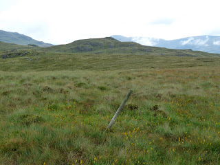 A lone post is found in the boggy ground on my way from Great Worm Crag to White How.