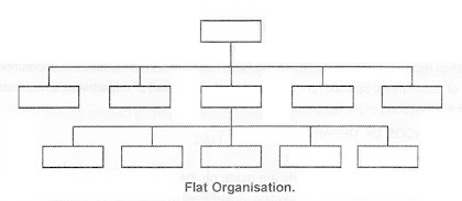 flat organisation structure