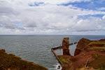 Helgoland; die Brutkolonien und die Lange Anna