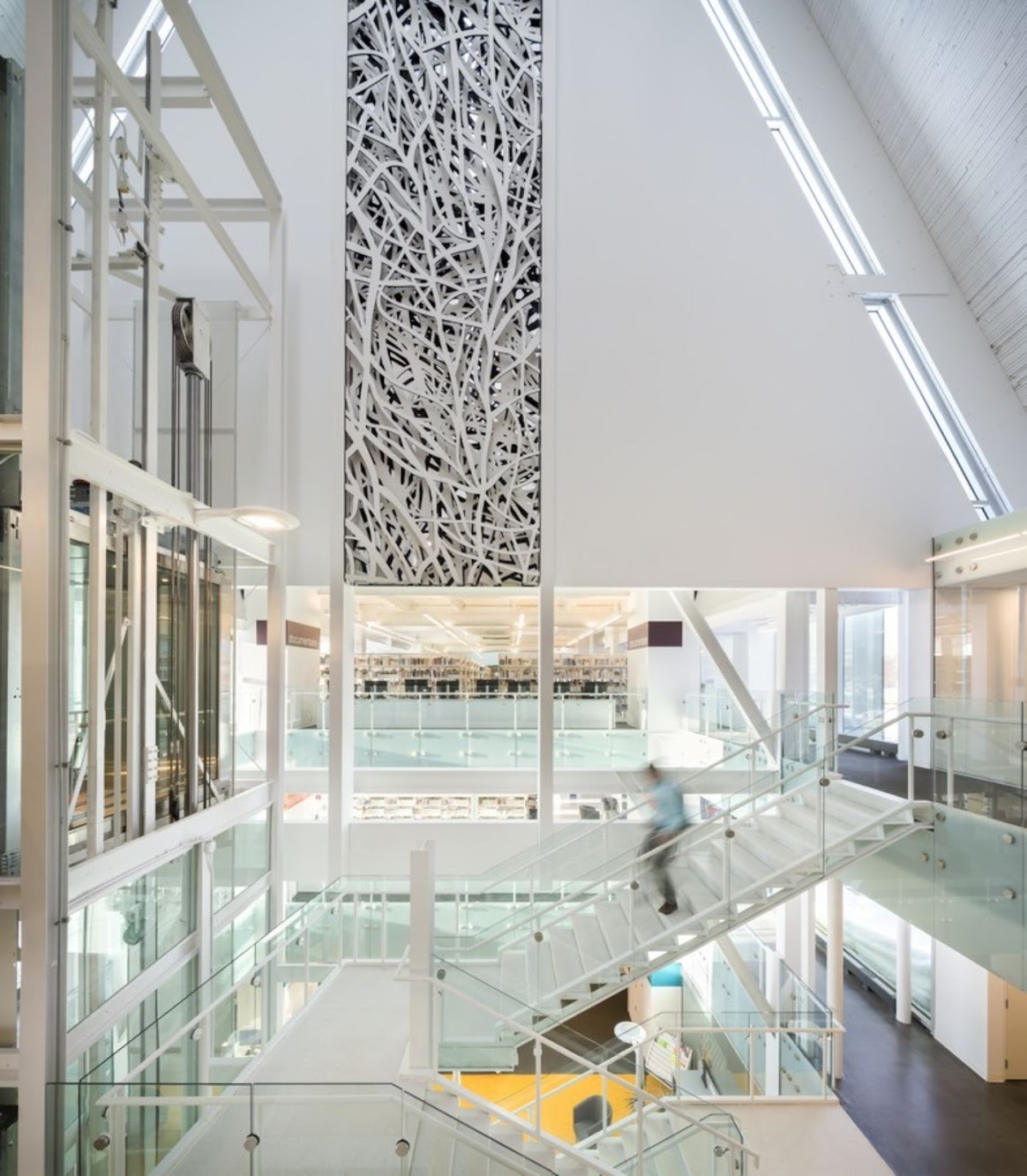Monique Corriveau Library by Dan Hanganu and Clc