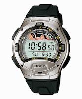 Casio Standard : W-753