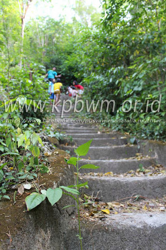 tangga menuju pantai palippis