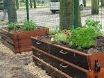 L'assemblée générale des résidents (ADCR) a monté un projet de jardin collectif à la Cité internationale Espace multi-fonctionnel à porté environnementale et pédagogique, ce jardin est également un espace de rencontre et de partage autour d'activités socio-culturelles (jardinage, barbecue, zone de travail, concert en plein air etc...).