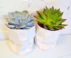 DIY paper plant pots