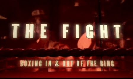 Historia Boksu / The Fight (2004) PL.TVRip.XviD / Lektor PL