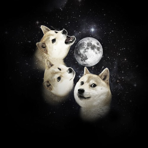 Three Doge Moon