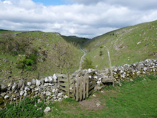 Looking to Dowel Dale