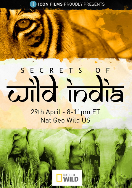 Dzikie Indie / Secrets of Wild India (2011) PL.TVRip.XviD / Lektor PL