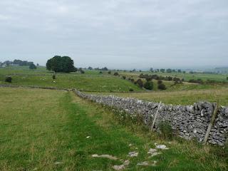 Near Fern Dale