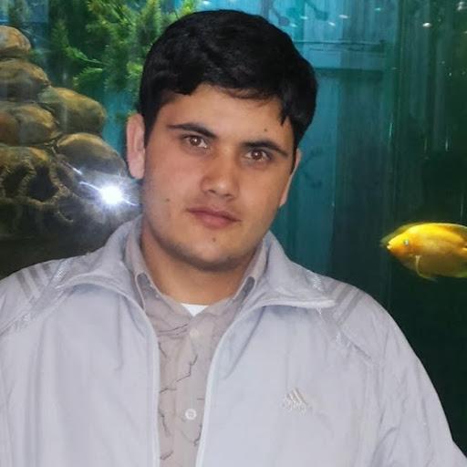 Mohib Ullah picture