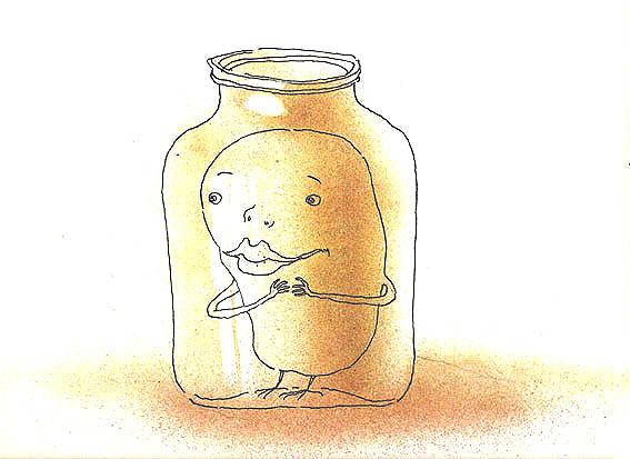 Зоки обычно заводятся в банках с мёдом. Будьте бдительны!