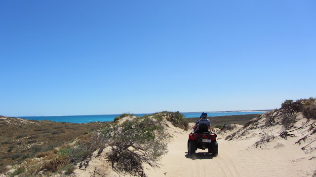 Checking out Coral Bay's beautiful beaches with ATVs.