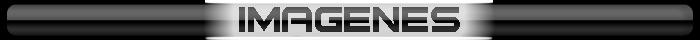 Worms 4 Mayhem HD [Full | PC | ISO | Español | MF] MxaDdK
