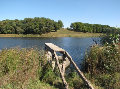 За втручанням Старобільської місцевої прокуратури районній державній адміністрації повернуто земельну ділянку водного фонду