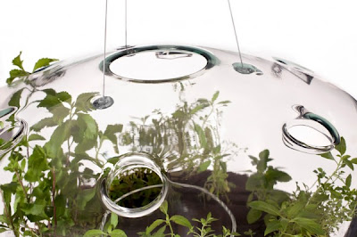 Glass Greenhouse Lamp by Krstyna Pojerova Seen On www.coolpicturegallery.us