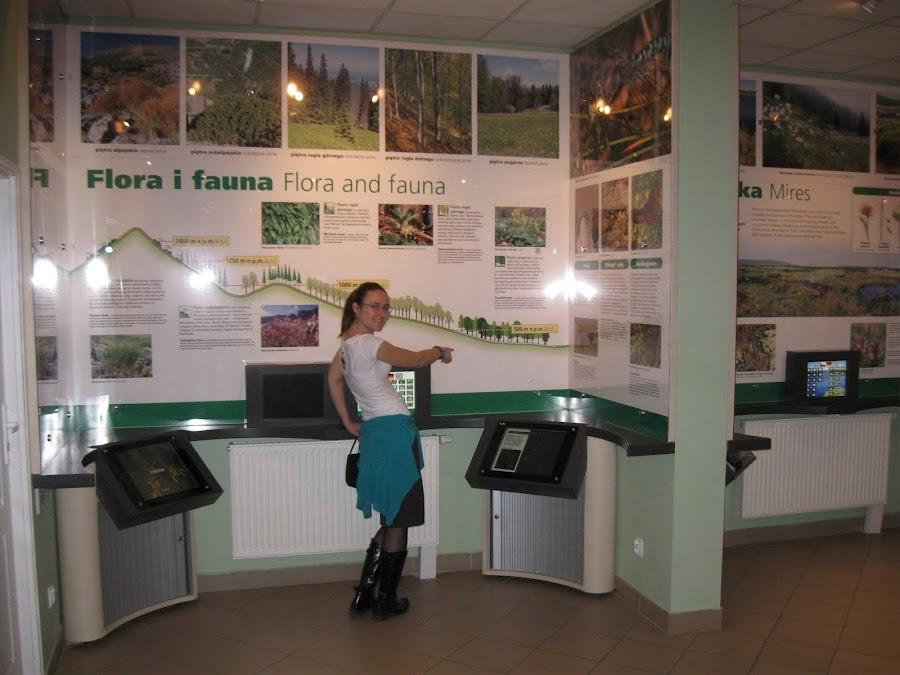 Muzeum Karkonoskie w Szklarskiej Porębie