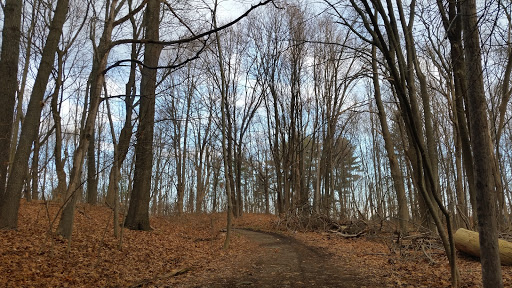 Park «Greycourt State Park», reviews and photos, 37 Pleasant St, Methuen, MA 01844, USA