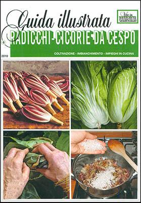 Manuale - Vita in Campagna - Guida Illustrata alla Coltivazione dei Radicchi e delle Cicorie ( 2010 )Ita