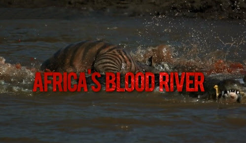Krwawa rzeka / Africa's Blood River (2013) PL.HDTV.1080i / Lektor PL