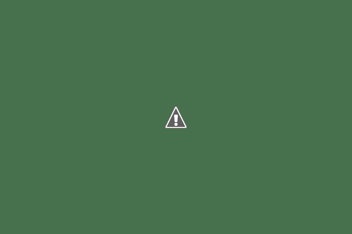 Спуск с перевала Улаганский на велосипеде