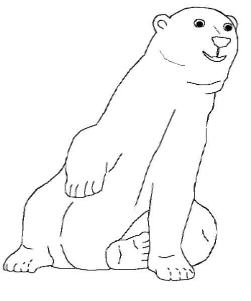 Polar Bear Printout- EnchantedLearning  - polar bear coloring pages