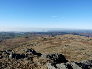 White Pike from Yoadcastle