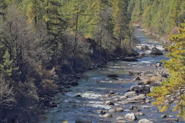 Mountain stream enroute to Mebar Tsho, Central Bhutan