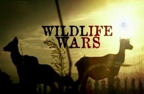 Wojny o dzik± przyrodê / Wildlife Wars (2004) PL.TVRip.XviD / Lektor PL
