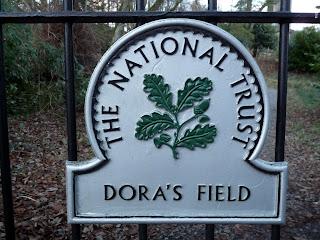 Entrance to Dora's Field