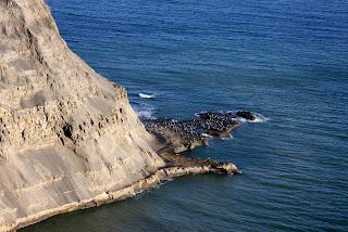 Birds on the rocks below