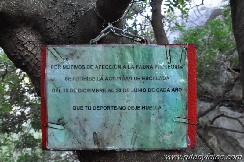 Los Baños Romano La Hedionda: : Torcal y Canuto de la Utrera – Baños de la Hedionda – Rio Manilva