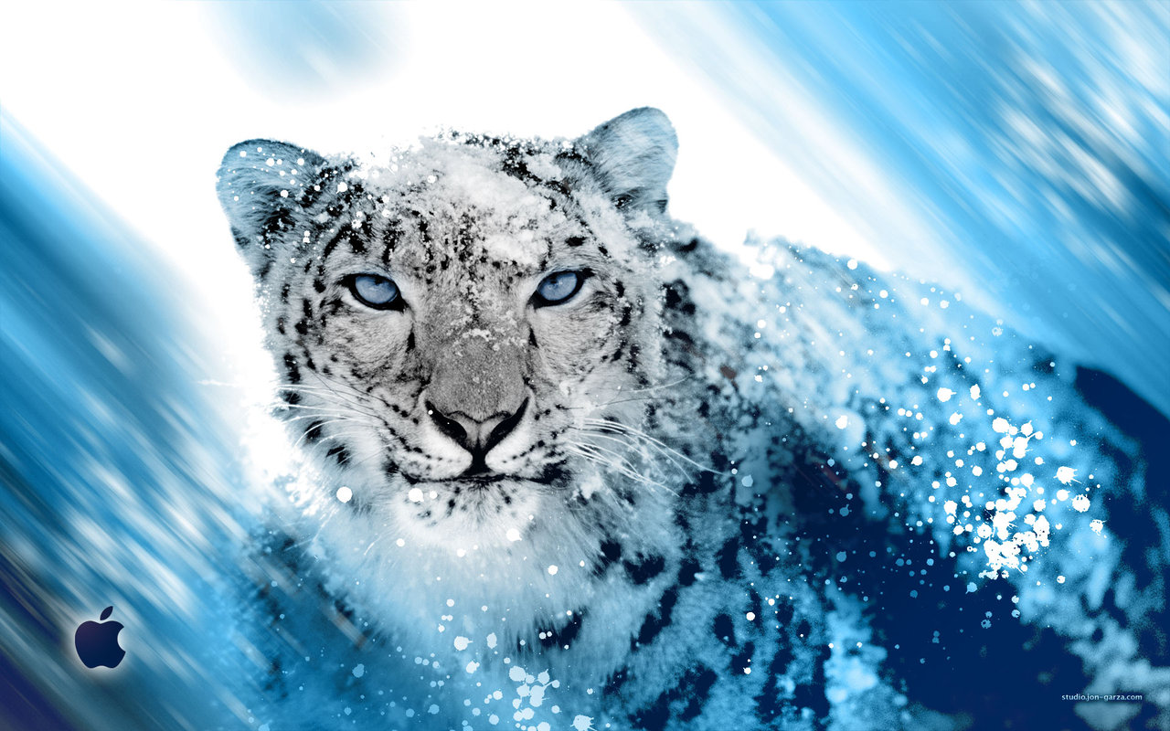Hackintoshosx86 winpcsnow leopard1068install hackintoshosx86 winpcsnow leopard1068install voltagebd Image collections