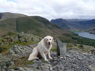 Time for a rest at the southern summit of Rannerdale Knotts