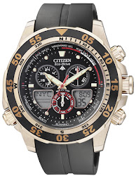 Citizen E-D Promaster : JR4046-03E