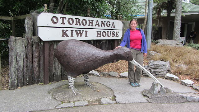 No photos allowed in the Kiwi House! This kiwi bird is not to scale...