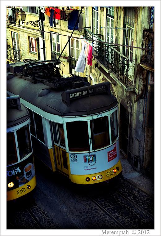 http://lh5.googleusercontent.com/-lCpsezPMLWc/T0pPLmVaRSI/AAAAAAAABQA/hFu-xnC9phE/w519-h761-no/Portugal+-+17+F%25C3%25A9vrier+20120086.jpg
