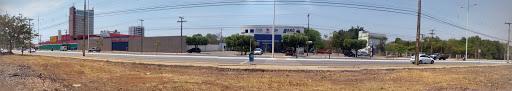 Arai, Kaminishi e Costa Diagnósticos, Plano Diretor Sul, Palmas - TO, 77016-524, Brasil, Clinica_Medica, estado Parana