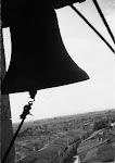 Una vista de Catral y su huerta desde el campanario. Años 40. (Arch. Foto de D.Francisco Oliver Forner). Biblioteca Municipal de Catral.