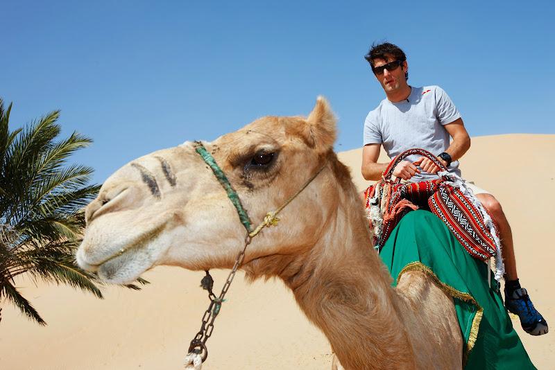 Марк Уэббер на верблюде в песчаной пустыне перед Гран-при Абу-Даби 2011