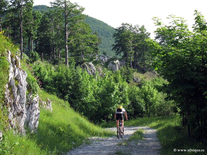 Bicicleta in zona Megedinti