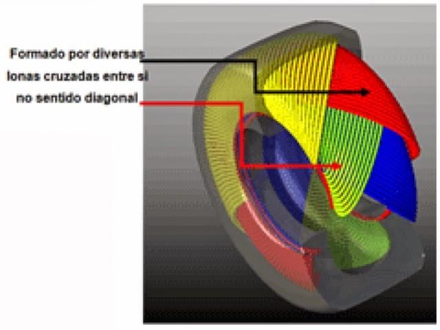 blogger image 300332363 - A EVOLUÇÃO DA ESPÉCIE